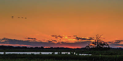 Wetlands Photograph - St Johns River Sunrise by Stefan Mazzola