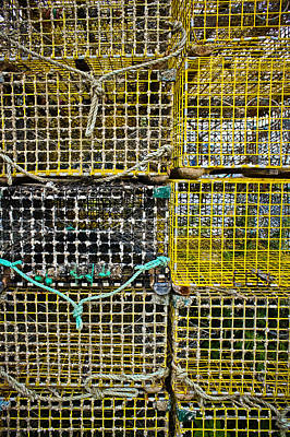 Netting Photograph - Stacked Traps by Colleen Kammerer
