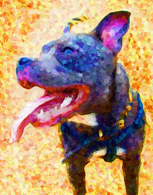 Staffordshire Bull Terrier In Oil Print by Michael Tompsett