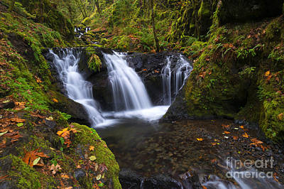 Autumn Photograph - Staircase Of Water by Mike Dawson