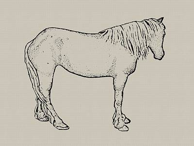Drawing - Standing Horse by Joyce Geleynse