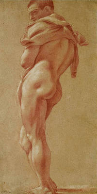 Pietro Faccini Drawing - Standing Male Nude Seen From Behind by Pietro Faccini