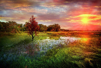 Standing Tall At Sunset Print by Debra and Dave Vanderlaan