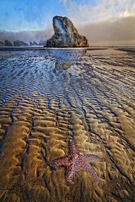 Starfish At Low Tide Print by Debra and Dave Vanderlaan
