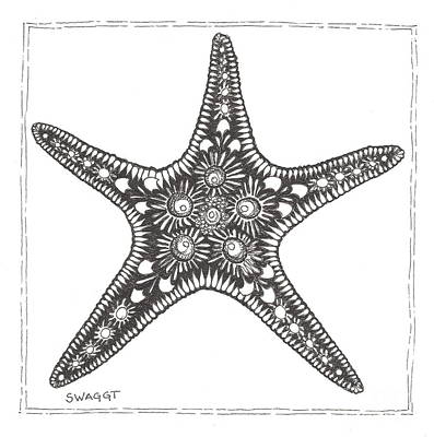 Seashell Drawing - Starfish by Stephanie Troxell