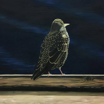 Starlings Painting - Starling by Elisenda Vila