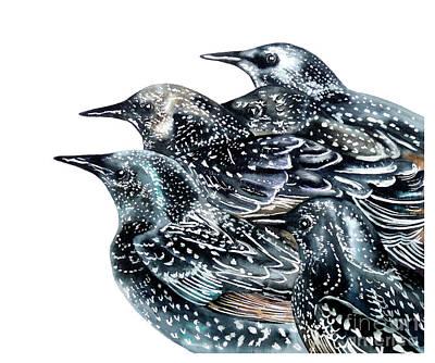 Starlings Painting - Starlings by Marie Burke