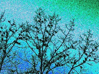 Starlings Digital Art - Starlings by Will Borden