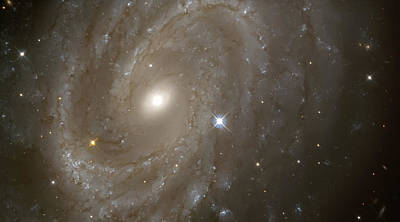 Stars And Spiral Galaxy Print by The  Vault - Jennifer Rondinelli Reilly