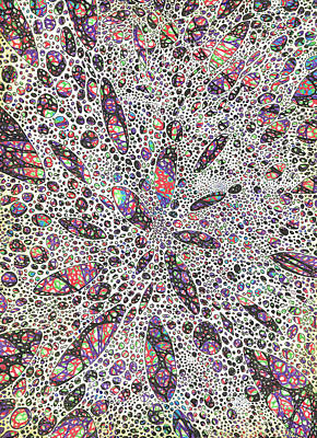 Paisley Drawing - Stars Give Birth To Color by Vincent Alexander Booth