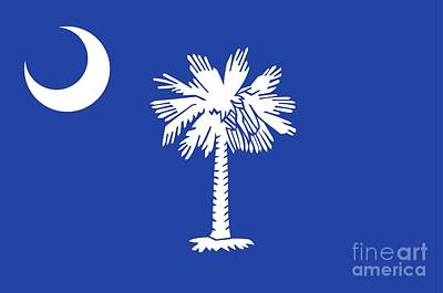 Federal Government Painting - State Flag Of South Carolina by American School