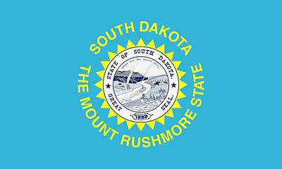 Federal Government Painting - State Flag Of South Dakota by American School
