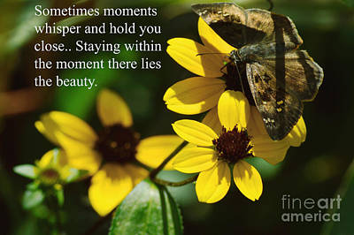 Staying Within The Moment Print by Robyn King