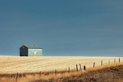 Steel Clad Shed Print by Todd Klassy