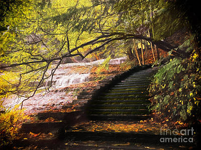 Steps At Buttermilk Falls Print by Robert Gaines
