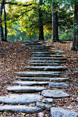 Steps Of Fall Print by Lana Trussell