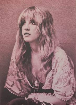 Music Photograph - Stevie Nicks  by Donna Wilson