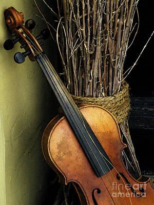 By Joe Jake Pratt Photograph - Sticks And Strings by Joe Jake Pratt
