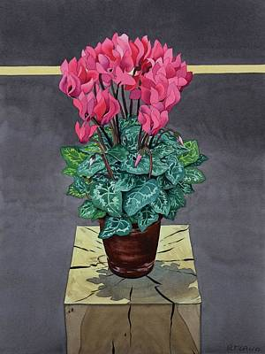 Still Life Cyclamen Print by Christopher Ryland