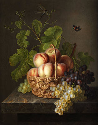 Kiwi Painting - Still Life by Gerardus van Spaendonck