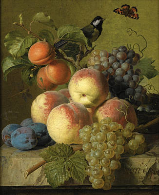 Jan Frans Van Dael Painting - Still Life Of Peaches Grapes And Plums On A Stone Ledge With A Bird And Butterfly by Jan Frans van Dael