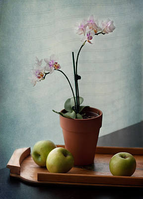 Still Life With Orchids And Green Apples Print by Maggie Terlecki