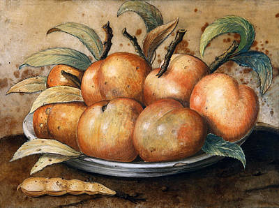 Giovanna Garzoni Painting - Still Life With Peaches And Carob by Giovanna Garzoni
