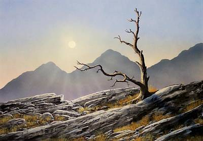 Pacific Crest Trail Painting - Still Standing by Frank Wilson