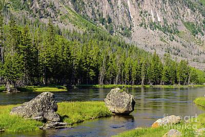 Yellowstone Digital Art - Stone At Madison River by Jennifer White