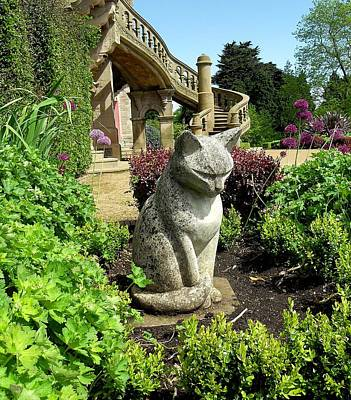 Stone Cat Print by Patrick J Murphy