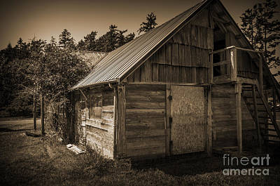Shed Digital Art - Storage Shed In Sepia by Kirt Tisdale