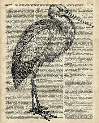 Nature Lover Mixed Media - Storkwild Bird Vintage Ink Illustration Over Old Book Page by Jacob Kuch