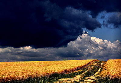 Storm Photograph - Stormy Path by Emily Stauring