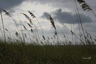 Stormy View From The Dunes Print by Suzanne Gaff