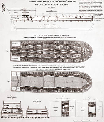 Stowage Of The British Slave Ship Brookes Under The Regulated Slave Trade Act  Print by American School