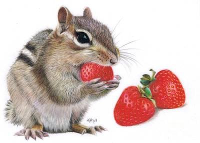 Strawberry Delight Print by Karen Hull
