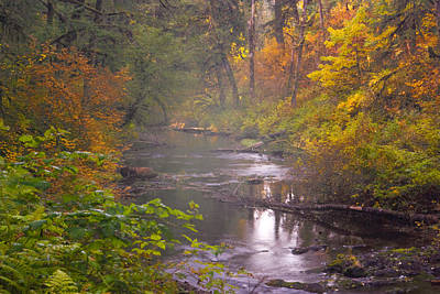 Stream Of The Fall Print by Dale Stillman