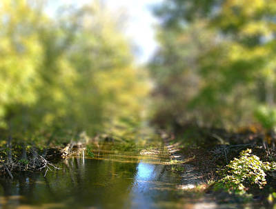 Manipulation Photograph - Stream Reflections by EricaMaxine  Price