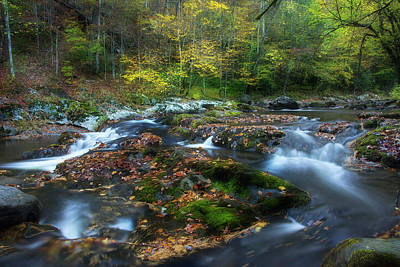 River Scenes Photograph - Streaming Through The Season by Mike Eingle