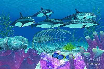 Striped Dolphin And Wreck Print by Corey Ford