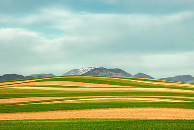 Rotate Photograph - Stripes Of Crops by Todd Klassy