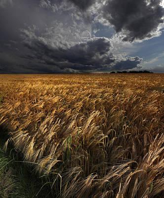 Windy Photograph - Strohgaeu by Franz Schumacher