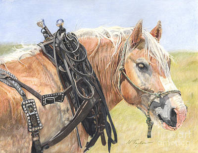 Draft Horses Drawing - Strong And True by Nichole Taylor