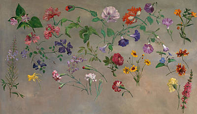 Jacques Laurent Agasse Painting - Studies Of Flowers by Jacques-Laurent Agasse