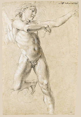 Drawing - Study For A Figure Of Icarus by Lorenzo De Ferrari