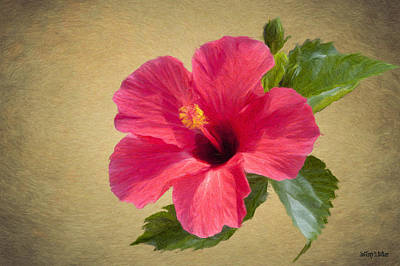 Hibiscus Painting - Study In Scarlet by Jeff Kolker