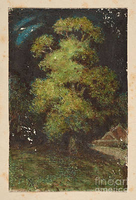 Century Painting - Study Of A Tree by Celestial Images