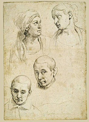 Drawing - Study Of Heads by Attributed to Alessandro Tiarini