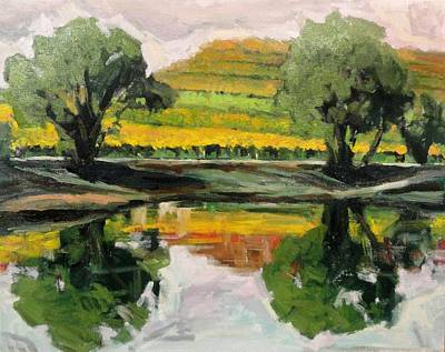 Study Of Reflections And Vineyard Print by Kevin Davidson