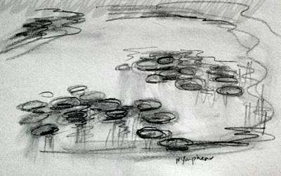Waterlily Drawing - Study Of Waterlily Pond  by Hae Kim